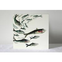 Anna Wright Grußkarte mit Umschlag Fishy Friends 15 x 15