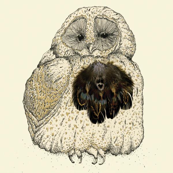 Anna Wright Grußkarte mit Umschlag Owlie 15 x 15